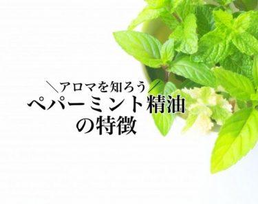 【メディカルアロマの勉強】ペパーミント精油の特徴と効果