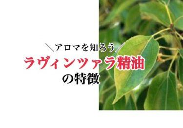 【メディカルアロマの勉強】ラヴィンツァラ精油の特徴と効果