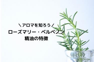 【メディカルアロマの勉強】ローズマリー・ベルベノン精油の特徴と効果